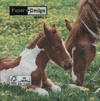 4880 - Mother horse and foal