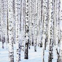 5210 - Winter Birches