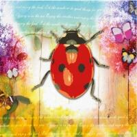5293 - Ladybug and flowers