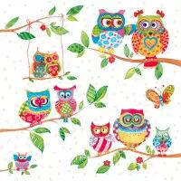 5534 - Owls in Summerland