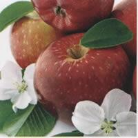 3957 - Apples and apple flowers