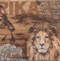 3926 - Africa Collage