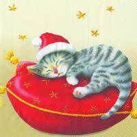 3562 - Kitten on pillow with Santa hat