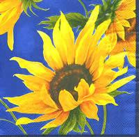 3384 - Sunflowers with blue background