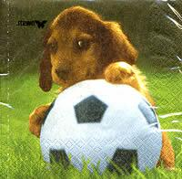 3334 - Puppy and football
