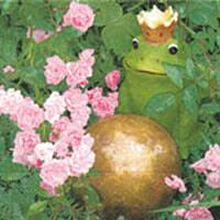 3197 - Frog Prince and roses