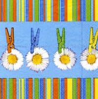 2205 - Daisies and clothespins