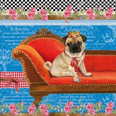 4530 - King of the pugs
