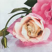 4045 - Pink Roses