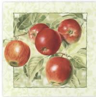 3959 - Red apples