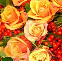 3888 - Orange Roses and currants