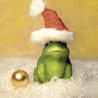 3515 - Frog with Santa hat