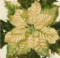 1986 – Poinsettia - White