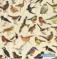 4032 - All kinds of birds - 20 pcs. - 40x40 cm