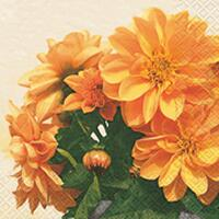 4197 - Dahlias - Orange