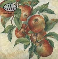 4493 - Apple harvest - cream