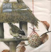 4518 - birdhouse with young titmouse