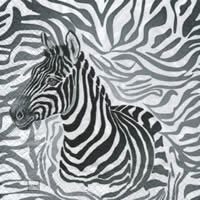4142 - Zebra on zebra background