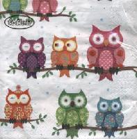 4795 - Colourful Owls