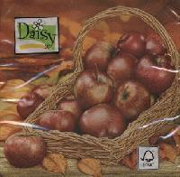 5028 - Apple basket