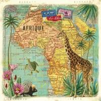 5140 - Travel to Africa
