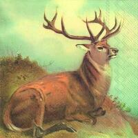 5240 - Lordly deer