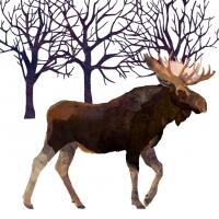 5298 - Winter Moose